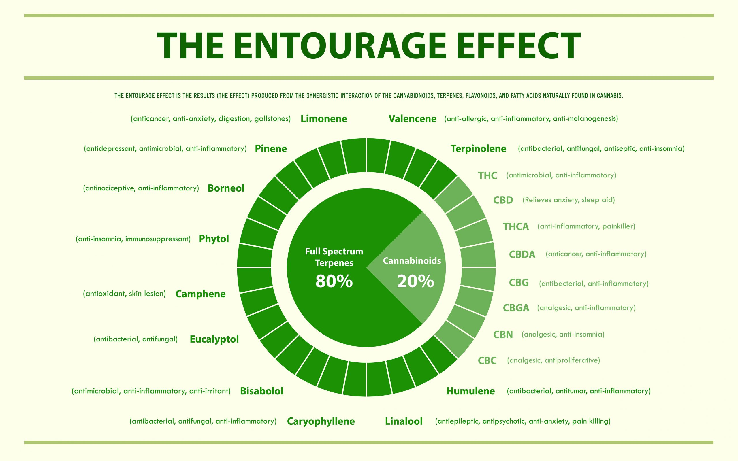 The Entourage Effect Infographic